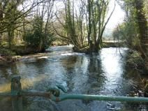 River Camel from Coombe Bridge Feb '12