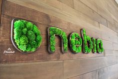 On the Creative Market Blog - 10 Stunning Green Walls That Make A Space Come Alive