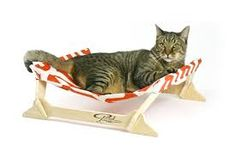 Cat Chaise Longue - Sök på Google