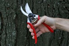 The Felco No. 2 Pruner is the company's original model and the everyday favorite of LA-based landscape designer Judy Kameon, whose gardens surround the homes of celebrities Sofia Coppola and Mike D. of the Beastie Boys; $53.65.