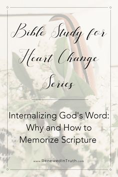 Do you memorize God's Word? Do you wish you knew more of Scripture? Or do you see now use in memorizing Scripture at all? Here's why we should be memorizing God's Word and some tips to help you along the way. Slow To Speak, Slow To Anger, Bible Study Tips, Daily Devotional, Daily Encouragement, Daily Bible, Christian Faith, Christian Living, Christian Warrior