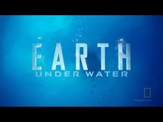 Earth Under Water. Miami, New Orleans and New York City completely under water - it's a very real possibility if sea levels continue to rise. The movie explores sea level rise with leading experts.