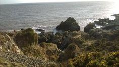Rocks near Portling on the Solway coast. March 2014