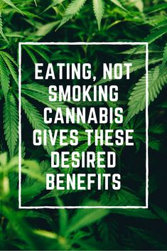 Eating Cannabis Gives These Desired Health Benefits. Healthy recipes, food recipes healthy, nutrition.