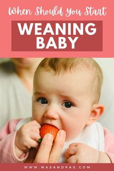 New moms are overwhelmed with information about baby weaning, but it doesn't have to be complicated. Whether you breastfeed or use formula, this article will help you understand what age it's best to start weaning your baby, give easy tips on how you'll know they're ready, and share science backed information on whether the 6 months start age is still accurate. #babyweaning #whentoweanbaby #babyweaningtips #newmomtips