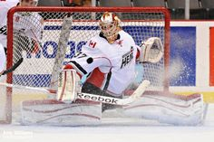 AHL The Abbotsford Heat Amy Williams Photography Hockey