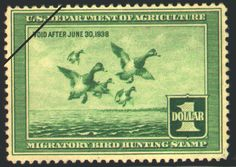 1937 Federal Duck Stamp (1937-1938)  Greater Scaups  by J.D. Knap. Black and white wash painting of Greater Scaups, by Joseph D. Knap. Painting was his hobby and duck hunting a favorite pastime. (Deceased)