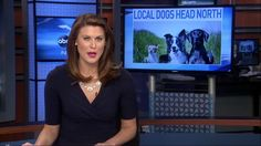 Northeast Animal Shelter is mentioned in a Pensacola news cast.  NEAS is helping to ease overcrowding at the Escambia County Animal Shelter, thanks to the volunteers at Escambia County Animal Shelter.