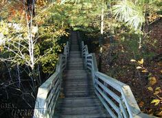 Stairs at Iargo Springs, Oscoda, MI