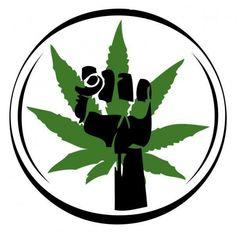 Diles que no somos como ellos, que soñamos despiertos y plantamos flores en desiertos. - http://growlandia.com/marihuana/diles-que-no-somos-como-ellos-que-sonamos-despiertos-y-plantamos-flores-en-desiertos/