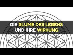 Die Blume des Lebens und ihre Wirkung💖 - YouTube Robert Weber, Videos, Youtube, Meditation, Flower Of Life, Random Stuff, Knowledge, Flowers, Youtubers