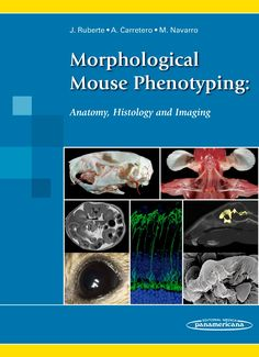 Morphological mouse phenotyping : anatomy, histology and imaging / Jesús Ruberte, Ana Carretero, Marc Navarro [directores]. Médica Panamericana, D.L. 2016