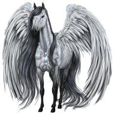 Dark Knight, Pegasus Gypsy Vanner Mouse Gray - Howrse US Magical Creatures, Fantasy Creatures, Elfen Tattoo, Pegasus Tattoo, Dragons, Unicorn Art, Unicorn Pics, Unicorn Fantasy, Winged Horse