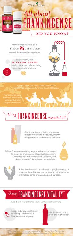Young Living Essential Oils | Frankincense | WWW.THESAVVYOILER.COM