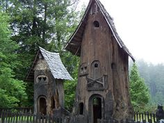 """redwood tree houses - a different meaning to the word """"treehouse."""""""