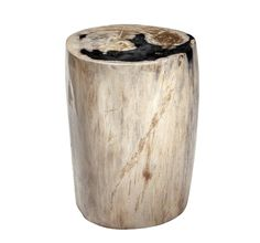 Vanessa Petrified Wood Side Table - Short - Contemporary Transitional Mid-Century Modern Art Deco Side & End Tables - Dering Hall Table Furniture, Home Furniture, Petrified Wood Table, Modern Art Deco, Wood Stool, Mid Century Modern Art, Contemporary Furniture, End Tables, Light In The Dark