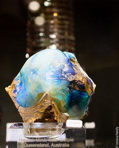 opal at 2013 Tucson Gem & Mineral Show
