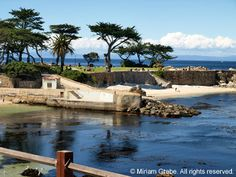 Lovers Point Beach, Pacific Grove Photo Cards and Prints by Miriam ...