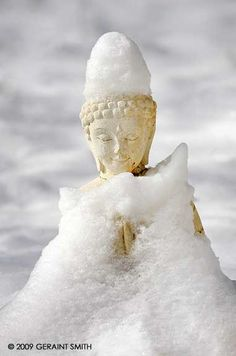 snow buddhist personals Find meetups about buddhist and meet people in your local community who share your interests.
