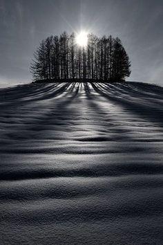Biei, Hokkaido, Japan. #photography #black and white #landscape