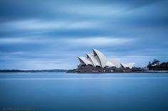 Fotky z výstrižkov - Joshua Gunther - Webové albumy programu Picasa