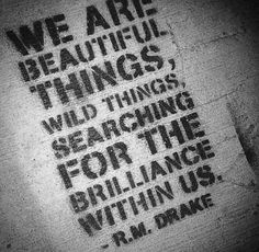 We are beautiful things...RM Drake