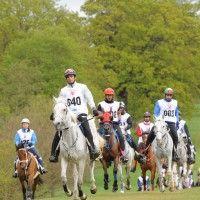 Windsor Endurance