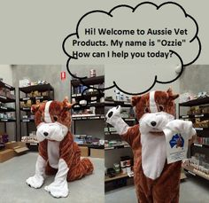 it's Ozzie, the Aussie Vet Products mascot. Keeping busy in the stock room, packing orders. Good work Ozzie!