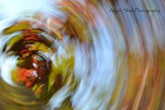 Fall leaves colors tear drop effect impressionist photography