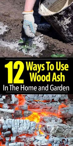 12 Ways To Use Wood Ash In The Home and Garden is part of Garden compost - 12 uses for wood ash in the garden and the home, help balance soil pH, deter slugs and snails, provide calcium for veggies, fertilize lawn [LEARN MORE] Garden Compost, Veg Garden, Garden Soil, Lawn And Garden, Garden Plants, Garden Landscaping, Veggie Gardens, Home And Garden, Garden In The Woods