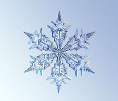 Another lovely snowflake from Kenneth Libbrecht