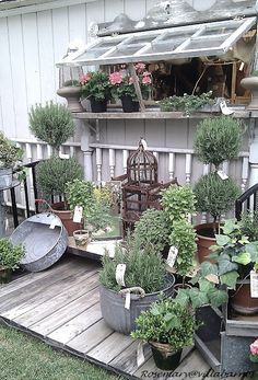 Recycled Windows, Reclaimed Wooden Pallets & Vintage Galvanized Containers. Great for herbs or bulbs. Add industrial locking wheels for added mobility on larger containers.
