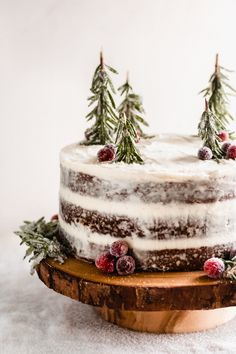 Oct 2019 - Three layers of deeply-flavored gingerbread cake, w/ mascarpone cream cheese frosting! Add sugared cranberries + fresh rosemary to make a winter wonderland! Holiday Cakes, Holiday Baking, Christmas Desserts, Christmas Baking, Christmas Treats, Christmas Cookies, Chrismas Cake, Christmas Cake Designs, Christmas Tree Cake