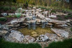 Galleries | Pond-free | Atlantic Water Gardens Water Feature Kits, Garden Waterfall, Water Gardens, Water Features, Garden Landscaping, Stepping Stones, Galleries, Pond, Custom Design