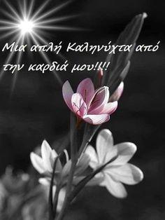 Good Night, Good Morning, Night Pictures, Anastasia, Greek, Quotes, Ideas, Nighty Night, Buen Dia