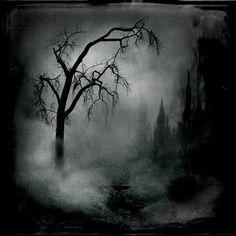 Nocturne en gris Photographie de @intao
