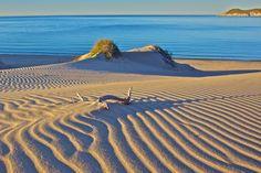 Los Algodones Sand Dunes, San Carlos, Sonora, Mexico by Craig Tissot, via 500px