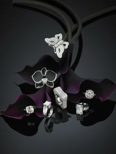 Hair raising Beautiful jewelry shoes,Handmade jewelry 2020 and Dainty jewelry aesthetic. Jewellery Advertising, Jewelry Ads, Jewelry Logo, Mom Jewelry, Jewelry Model, Jewelry For Her, Dainty Jewelry, Photo Jewelry, Cute Jewelry