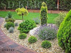 Precious Tips for Outdoor Gardens - Modern Backyard Garden Design, Garden Landscape Design, Home Landscaping, Front Yard Landscaping, Landscaping Design, Evergreen Garden, Garden Styles, Dream Garden, Garden Planning