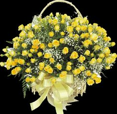 Conveniently send flowers from the online florist and surprise your dear ones. Make your presence felt with a well-arranged flower bouquet or basket through the stunning flower delivery in Chandigarh. Flowers Gif, Send Flowers, Roses Gif, Buy Flowers Online, Rose Basket, Flower Baskets, Online Flower Delivery, Online Florist, Diwali Gifts