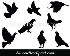 Pigeon Silhouette Clip Art Pack