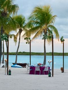Private beach dinner set up in the palms... welcome to paradise.