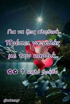 Όμορφες Εικόνες Καληνύχτα giortazo Greek Beauty, Beautiful Pink Roses, I Love You, My Love, Make Me Happy, Good Night, Quotes, Hair, Greek Language