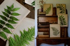Botanical Press ferns between dictionary pages. Mount on non acidic paper, and/or frame. Botanical Illustration, Botanical Prints, Botany, Ferns, Decoration, Easy Crafts, Planting Flowers, Picture Frames, Art Projects