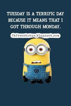 funny tuesday memes Happy Tuesday Meme, Happy Tuesday Morning, Tuesday Motivation Quotes, Motivational Quotes, Funny Quotes, Funny Happy, Morning Quotes, Memes, Funny Phrases