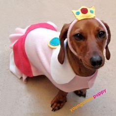Princess Peach dog Halloween costume