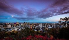 Belvedere Of Mount Royal Montreal Montreal, Attraction, Outdoor, Outdoors, Outdoor Games, The Great Outdoors