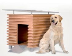 I think this is my favorite from Forma Italia's line of doghouses.  I wonder if Arwen would use it