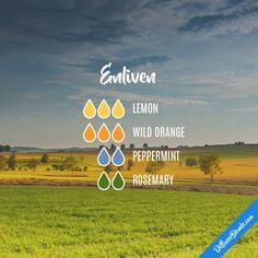Enliven - Essential Oil Diffuser Blend