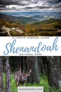 Pack up your gear, dust off the tent or RV, and get ready to explore with our Shenandoah Camping Guide. Learn about all 5 campgrounds in Shenandoah National Park.